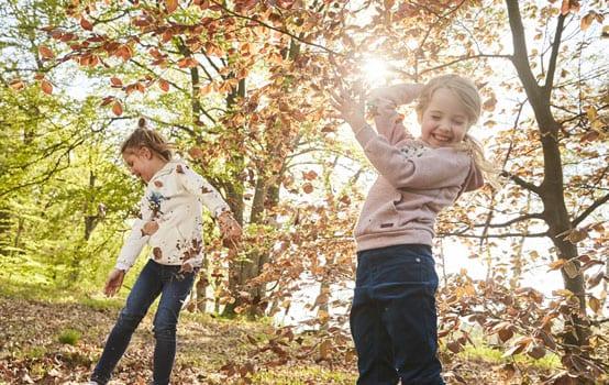 Waldspaziergang mit Kindern