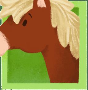 Pferde-Party